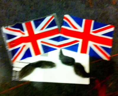 Small flags & moustaches